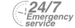 24/7 Emergency Service Pest Control in Downside, Cobham, Stoke d'Abernon, KT11. Call Now! 020 8166 9746
