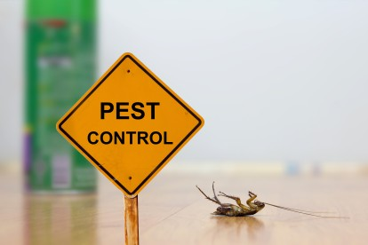 Pest Contol in Downside, Cobham, Stoke d'Abernon, KT11. Call Now 020 8166 9746